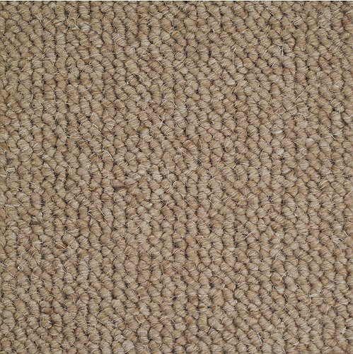 Buy Cheap Carpets Online Nelson_91_Thatch - 2015-06-19 14:30:51