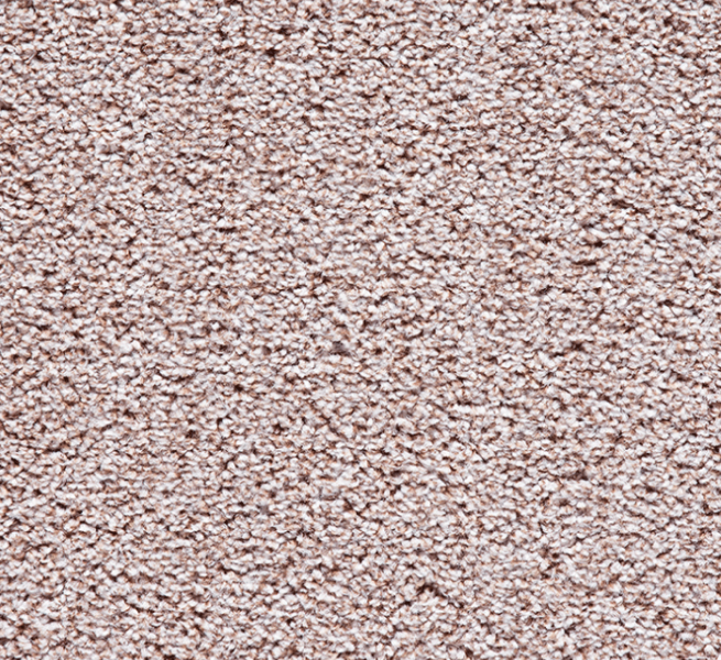 Buy Cheap Carpets Online Black_Forest_Heathers_2890_0695 - 2016-03-22 15:47:58