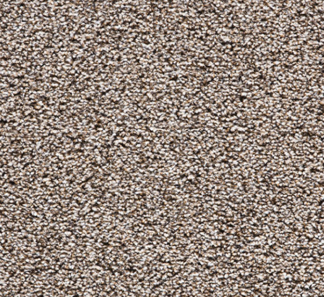 Buy Cheap Carpets Online Black_Forest_Heathers_2890_0845 - 2016-03-22 15:48:03