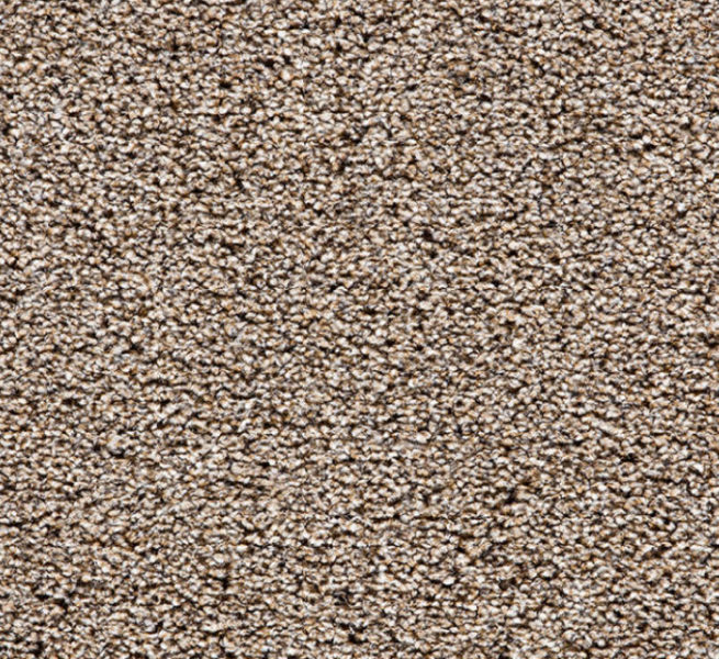 Buy Cheap Carpets Online Black_Forest_Heathers_2890_0875 - 2016-03-22 15:48:07