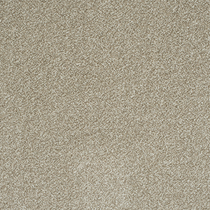 Buy Cheap Carpets Online stainfree-arena-plus-stone - 2016-03-31 09:36:16