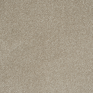 Buy Cheap Carpets Online stainfree-arena-plus-taupe - 2016-03-31 09:36:19