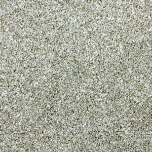 Buy Cheap Carpets Online ALDERNEY INTENZA LATTE - 2016-04-07 10:14:51