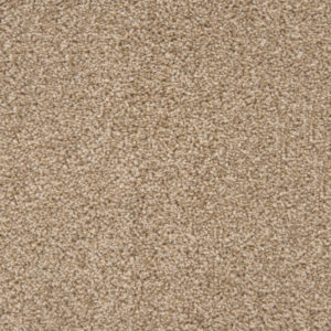 loving-touch-carpet-10-gazelle