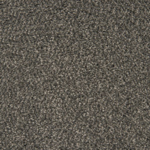 loving-touch-carpet-13-panther