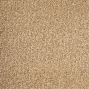 arena-plus-carpet-27-devon-cream