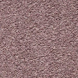 kendal-carpet-550-crocus