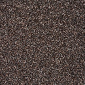 moonshine-carpet-890-coffee-blend